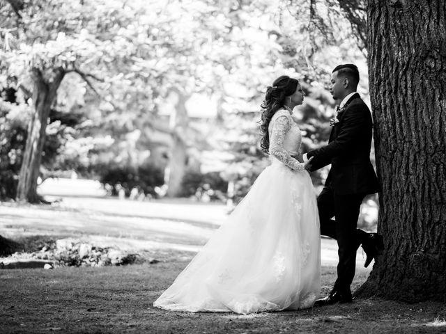 Le mariage de Nicolas et Anais à Lorris, Loiret 25