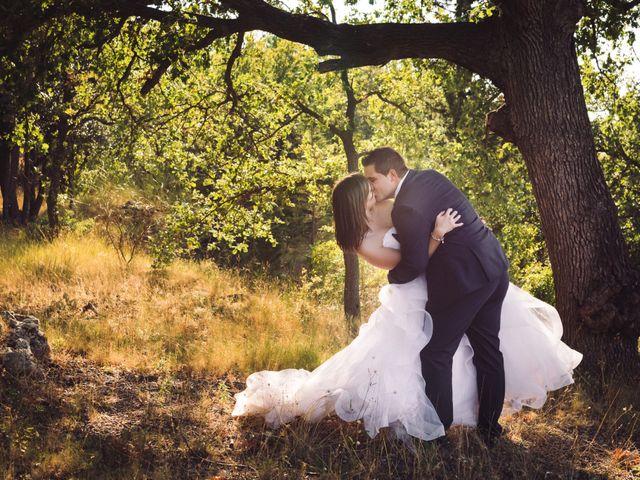Le mariage de Cédric et Séverine à Sauve, Gard 59