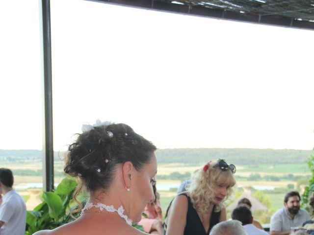 Le mariage de Romuald et Virginie à Clarensac, Gard 243