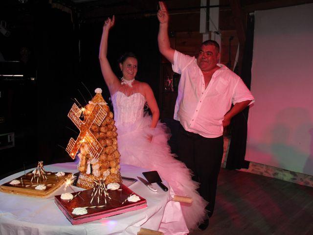 Le mariage de Romuald et Virginie à Clarensac, Gard 331