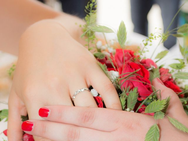 Le mariage de Daria et Emilie à Remoulins, Gard 31