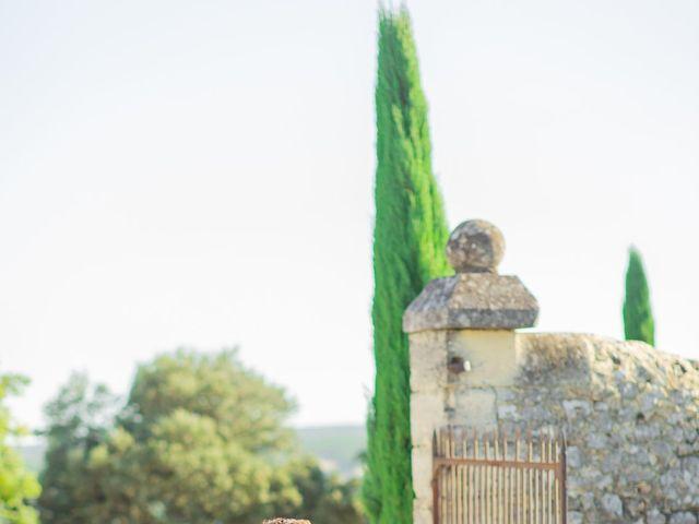 Le mariage de Wiliam et Valerie à Grignan, Drôme 76