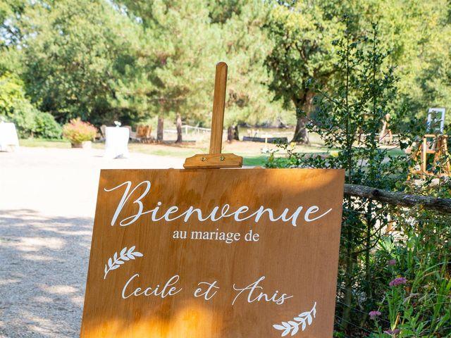 Le mariage de Anis et Cécile à Vallons-de-l'Erdre, Loire Atlantique 46