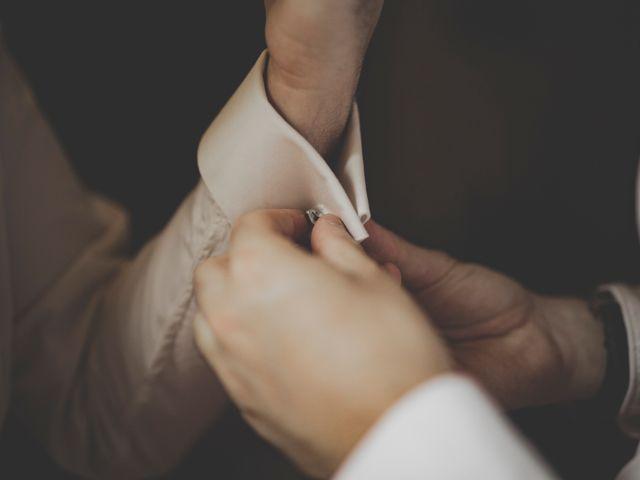 Le mariage de Denis et Fanny à Lasalle, Gard 10