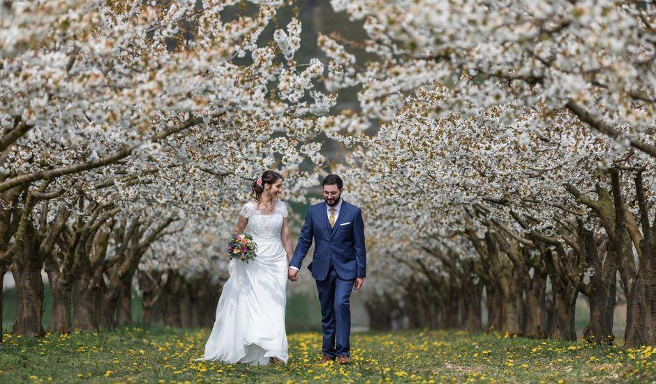 Le mariage de Vincent et Céline à Escolives-Sainte-Camille, Yonne