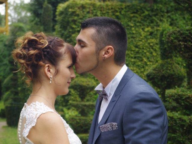 Le mariage de Romain et Ludivine à Montabard, Orne 6