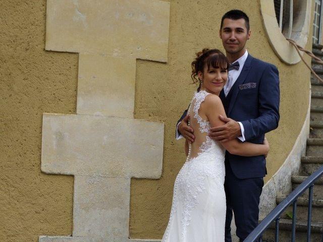 Le mariage de Romain et Ludivine à Montabard, Orne 7