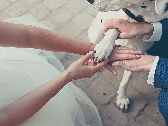 Le mariage de Ulrich et Céline à Ranchicourt, Pas-de-Calais 5