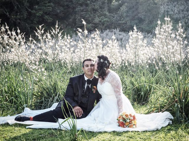 Le mariage de Jean-Louis et Celine à Ajaccio, Corse 17