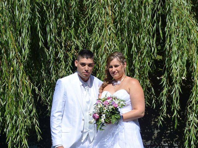Le mariage de Mark et Alison à Châlette-sur-Loing, Loiret 12