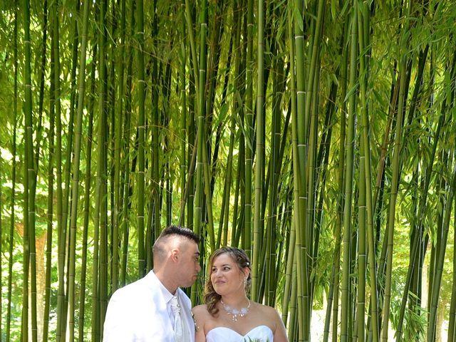 Le mariage de Mark et Alison à Châlette-sur-Loing, Loiret 19