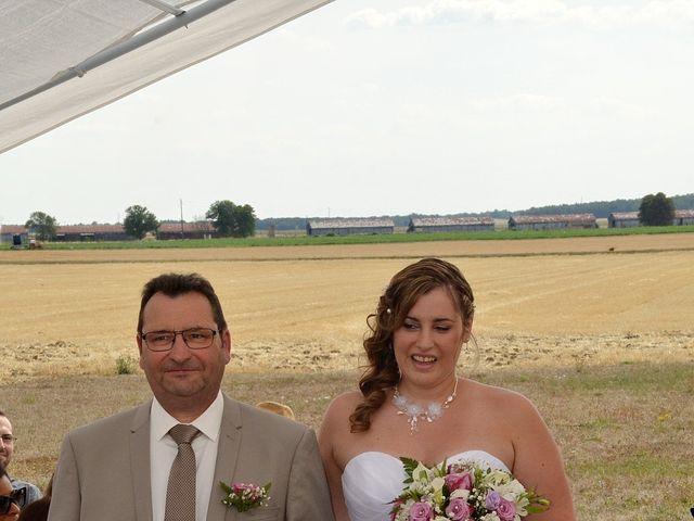Le mariage de Mark et Alison à Châlette-sur-Loing, Loiret 33