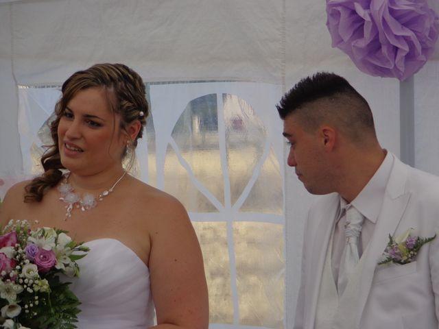 Le mariage de Mark et Alison à Châlette-sur-Loing, Loiret 35