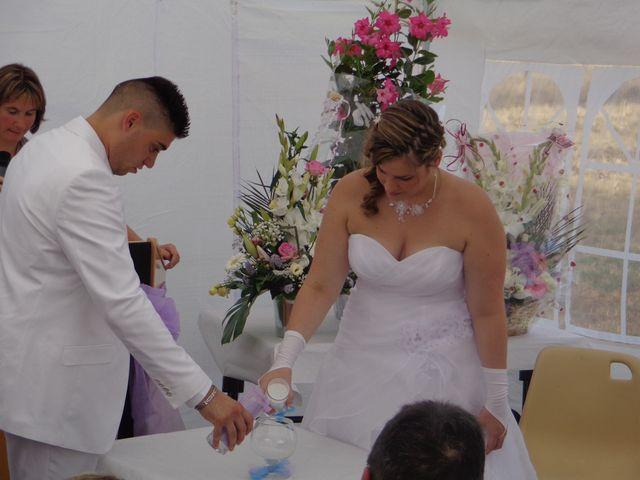 Le mariage de Mark et Alison à Châlette-sur-Loing, Loiret 37