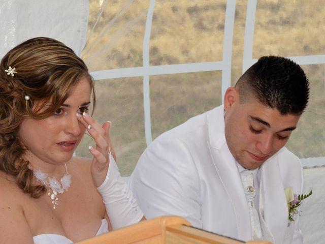 Le mariage de Mark et Alison à Châlette-sur-Loing, Loiret 39