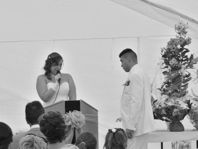 Le mariage de Mark et Alison à Châlette-sur-Loing, Loiret 40