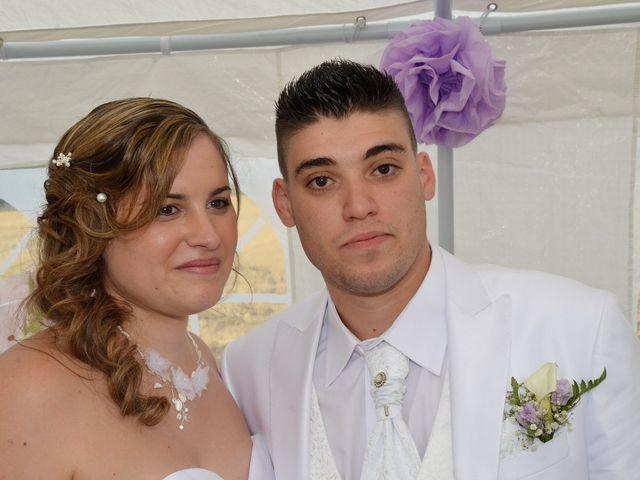 Le mariage de Mark et Alison à Châlette-sur-Loing, Loiret 46