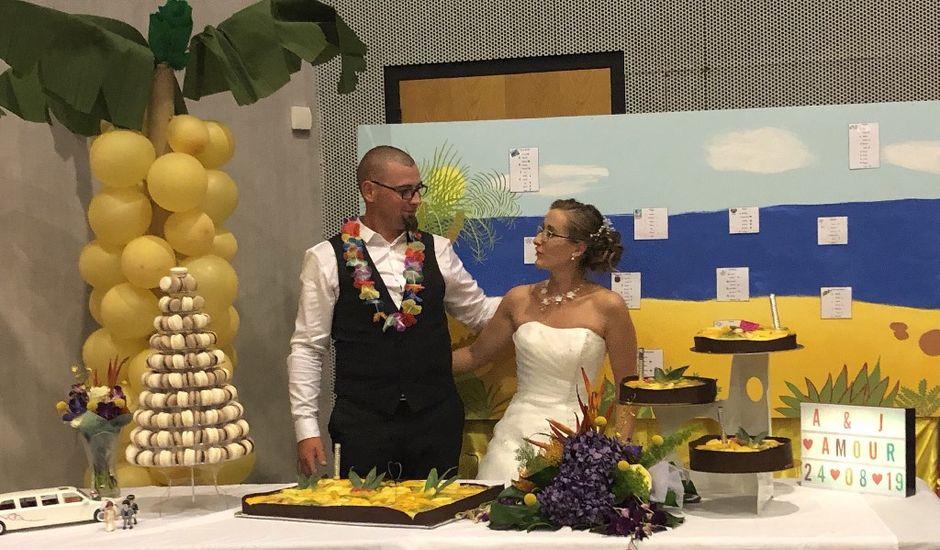 Le mariage de Julien  et Agathe et Julien à Thivet, Haute-Marne