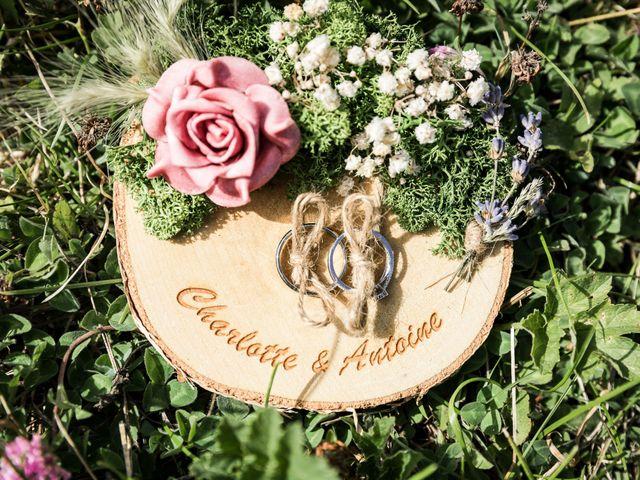 Le mariage de Antoine et Charlotte à Merey, Eure 3