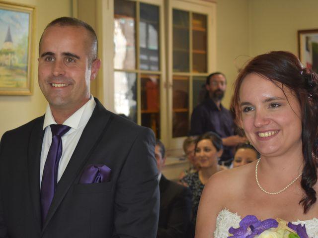 Le mariage de Fabrice et Laura à Sérignac-sur-Garonne, Lot-et-Garonne 18