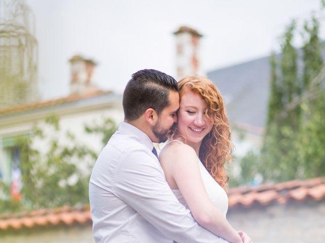 Le mariage de David et Isabel à Marans, Charente Maritime 7