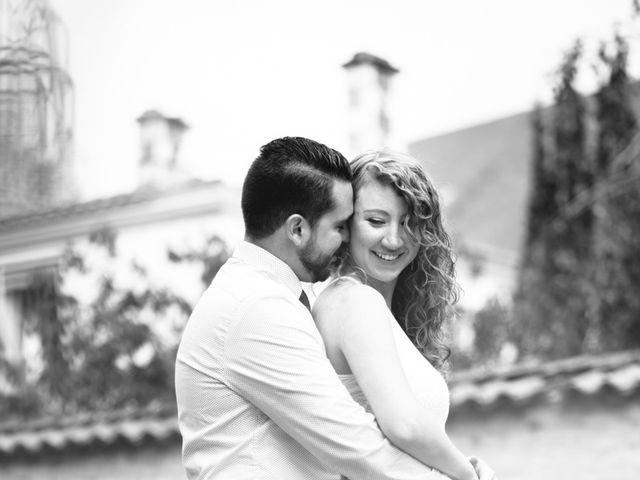 Le mariage de David et Isabel à Marans, Charente Maritime 8