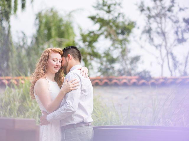 Le mariage de David et Isabel à Marans, Charente Maritime 9