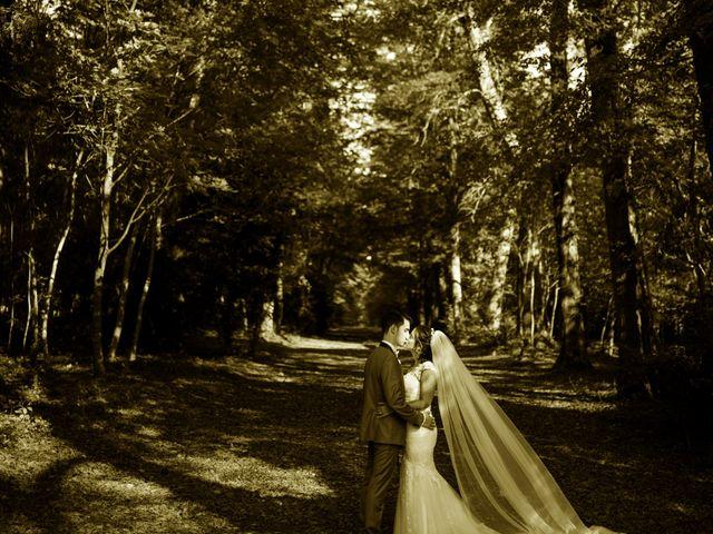 Le mariage de Guillaume  et Céline  à Nandy, Seine-et-Marne 61