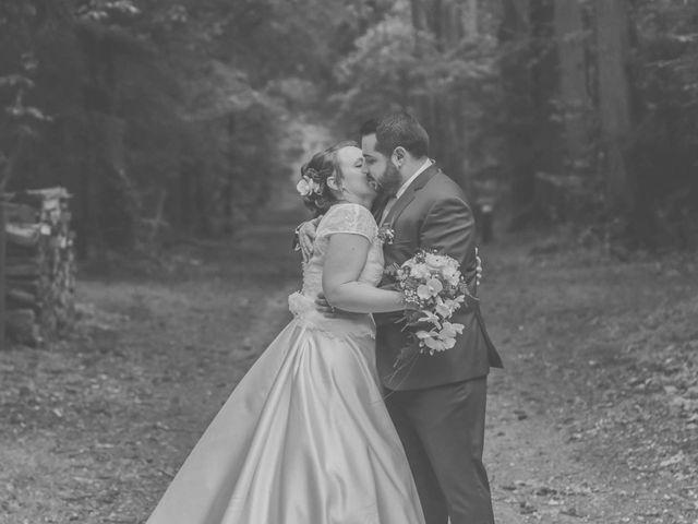 Le mariage de Maxime et Tiphanie à Vienne-en-Val, Loiret 14