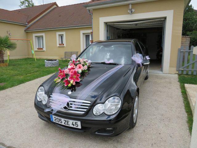 Le mariage de Thomas et Elodie à Gien, Loiret 8