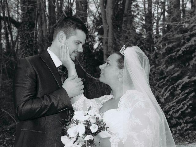 Le mariage de Mike  et Jennifer  à Brie-Comte-Robert, Seine-et-Marne 25