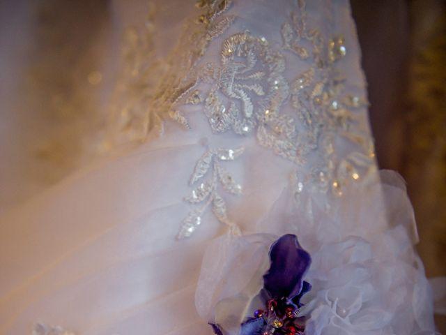 Le mariage de Elie et Emma à Tercé, Vienne 8