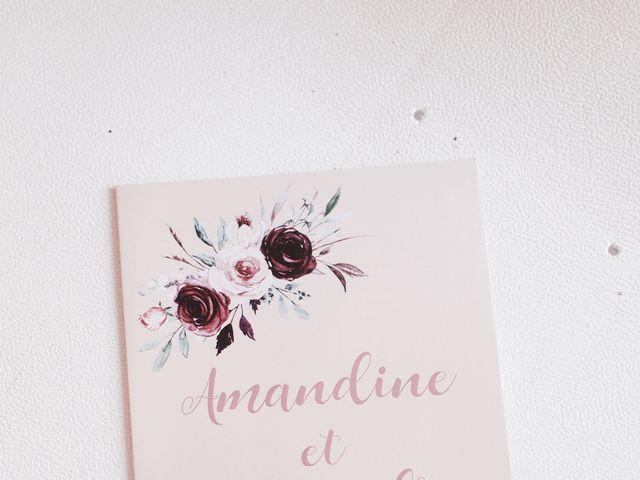 Le mariage de Alexandre et Amandine à Anse, Rhône 9