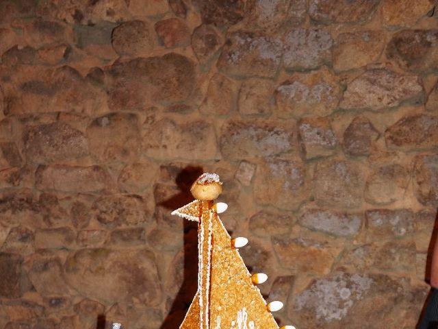 Le mariage de Guillaume et Lucille à Maclas, Loire 13