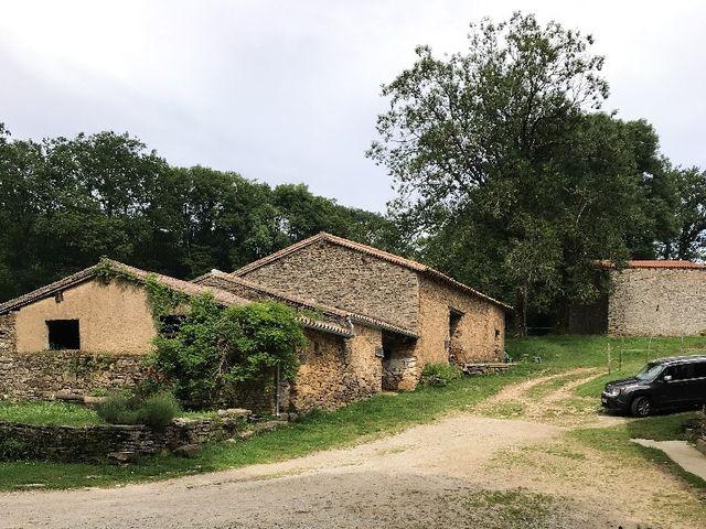 Le mariage de Wilfrid et Virginie  à Carcassonne, Aude 6