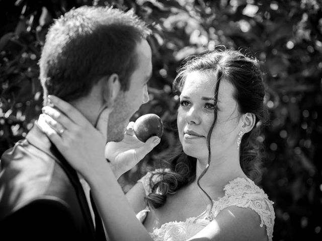 Le mariage de Damien et Fanny à La Couyère, Ille et Vilaine 5
