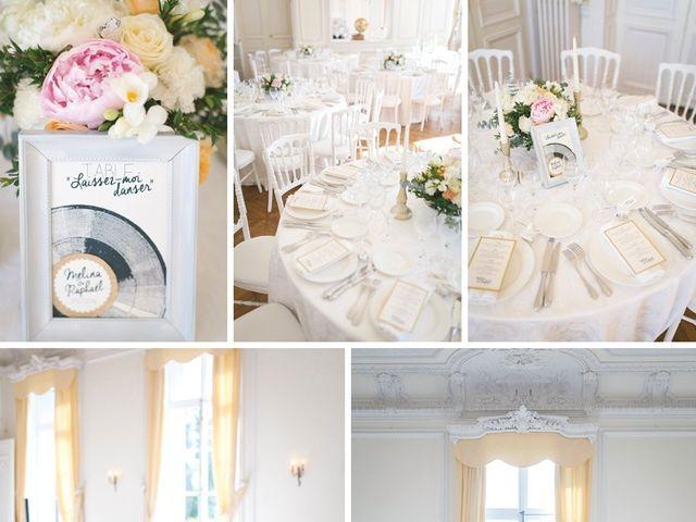 Le mariage de Raphael et Melina à Santeny, Val-de-Marne 50
