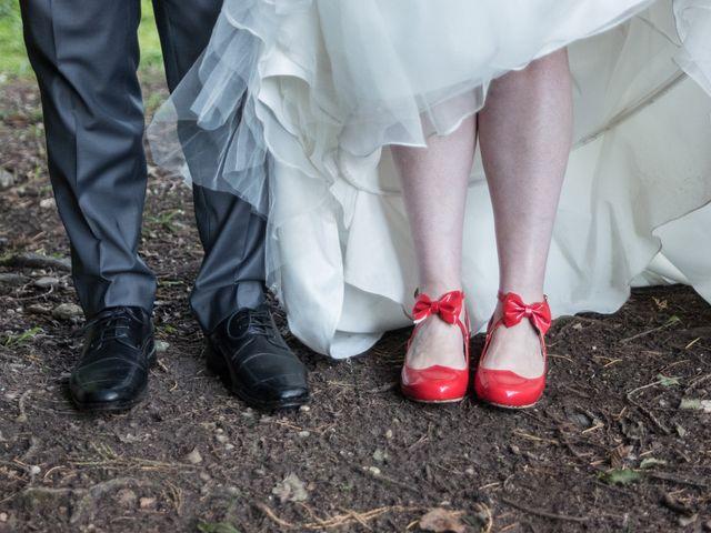 Le mariage de Sylvain et Amandine à Châbons, Isère 40