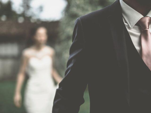 Le mariage de Pascal et Meggan à Saint-Christol-lès-Alès, Gard 12