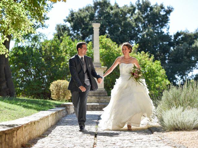Le mariage de Cyrille et Caroline à Sainte-Cécile-les-Vignes, Vaucluse 5
