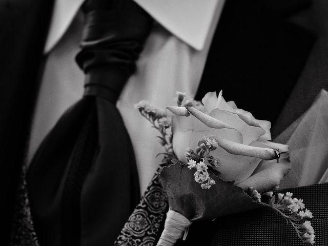 Le mariage de Stéphane et Marine à Arsac, Gironde 27