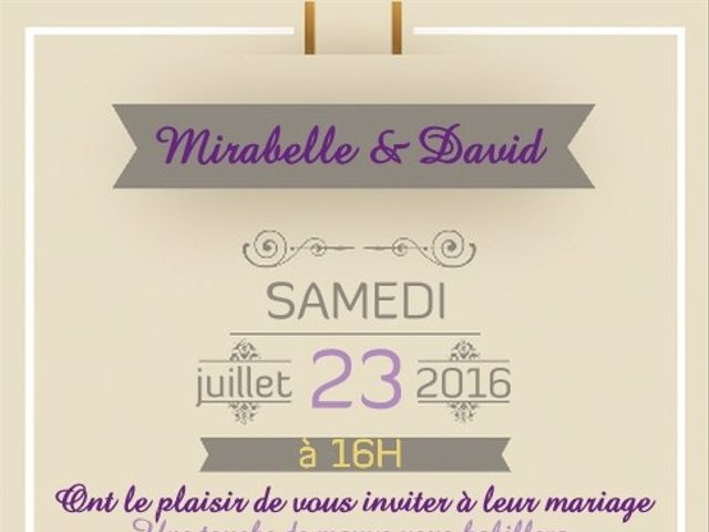 Le mariage de David et Mirabelle à Saint-Léonard-de-Noblat, Haute-Vienne 16