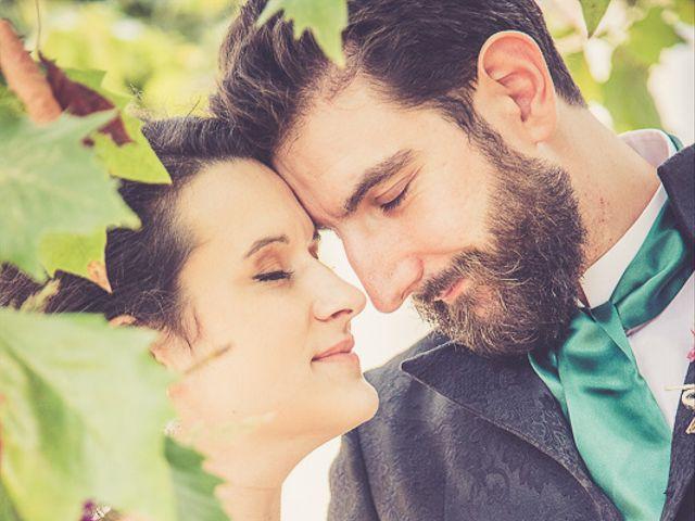 Le mariage de Xavier et Amélie à Aillant-sur-Tholon, Yonne 3