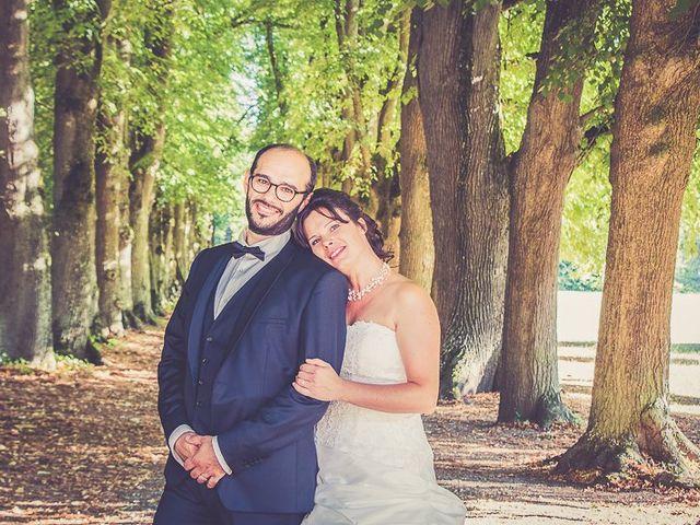 Le mariage de BERTRAND et ANNE LISE à Sens, Yonne 24