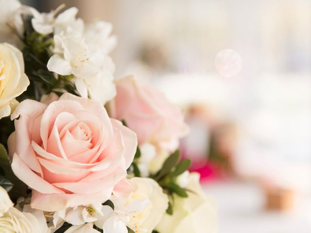 Le mariage de Orlando et Rose à Brie-Comte-Robert, Seine-et-Marne 18