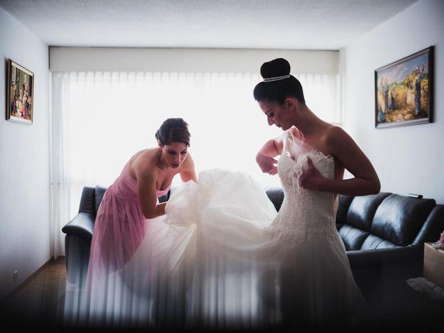 Le mariage de Luca et Tania à Ferney-Voltaire, Ain 7