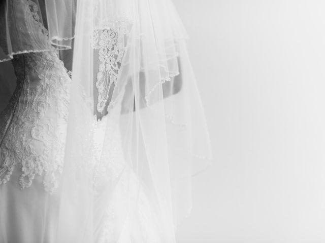 Le mariage de Luca et Tania à Ferney-Voltaire, Ain 10