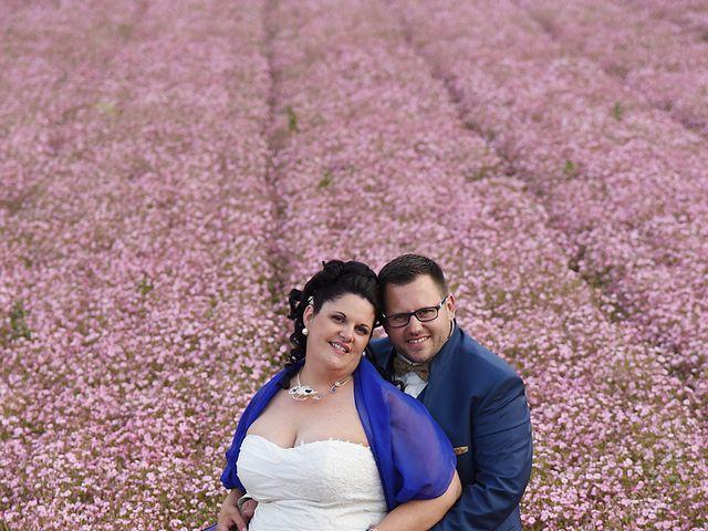 Le mariage de Romain et Angélique à Les Rosiers-sur-Loire, Maine et Loire 7