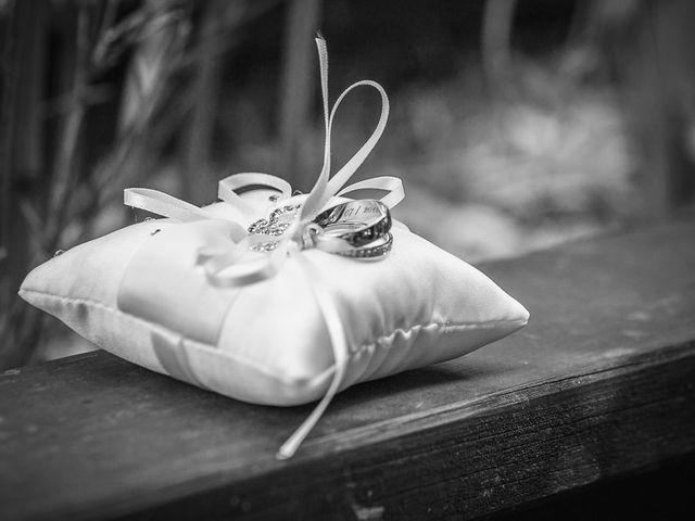Le mariage de Damien et Emmanuelle à La Combe-de-Lancey, Isère 10