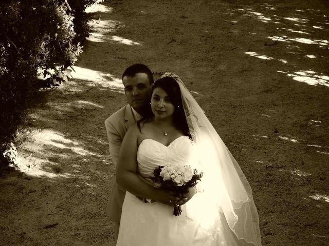 Le mariage de Sylvain  et Jade à Rochefort-du-Gard, Gard 5